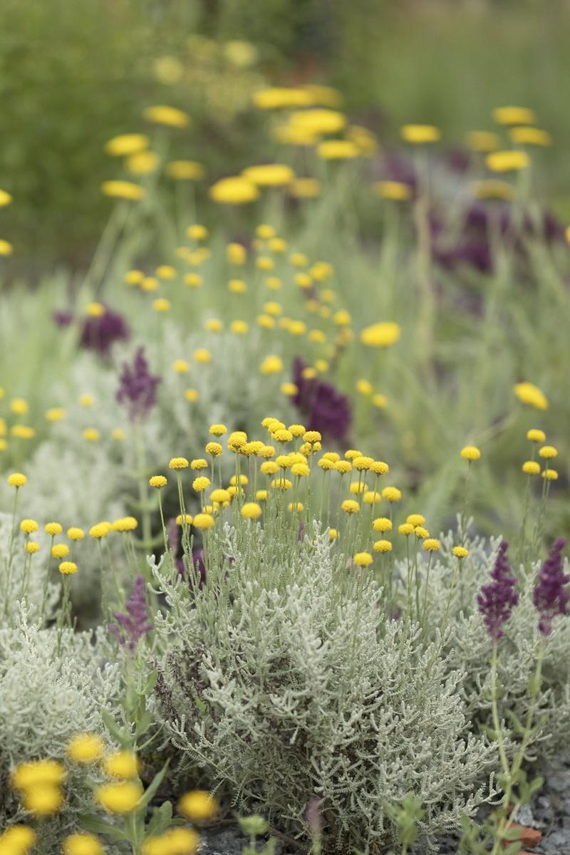 Berühmt Blumenbeet anlegen &TH_58