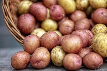 Die beliebtesten Kartoffelsorten und ihre Eigenschaften beim Kochen