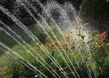 Den Garten richtig gießen