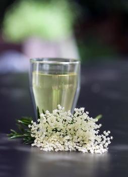 Tee aus Holunderblüten