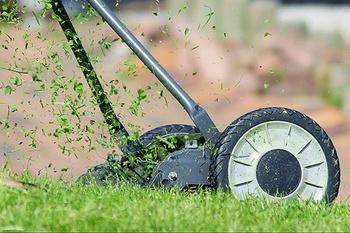 Rasen verbessern durch Mulchen