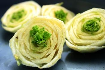 Trend Regrowing - wenn Küchenreste neues Gemüse hervorbringen