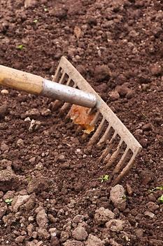 Gartenarbeit im Oktober im Gemüsegarten