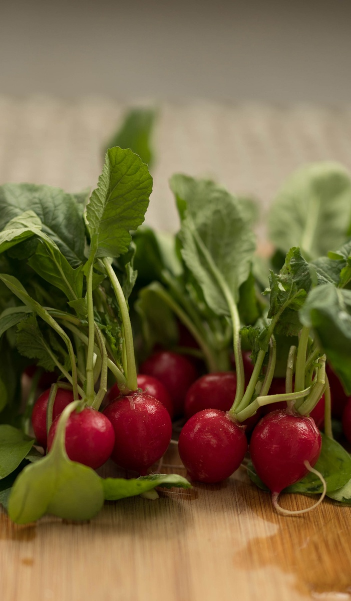 Gemüsegarten - cover