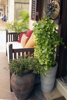Balkon und Terrasse mit Pflanzkübeln kreativ gestalten
