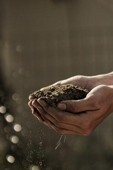 Gesunder und lebendiger Boden mit einem Bodenaktivator