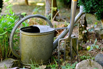 Gärtnern ohne Plastik