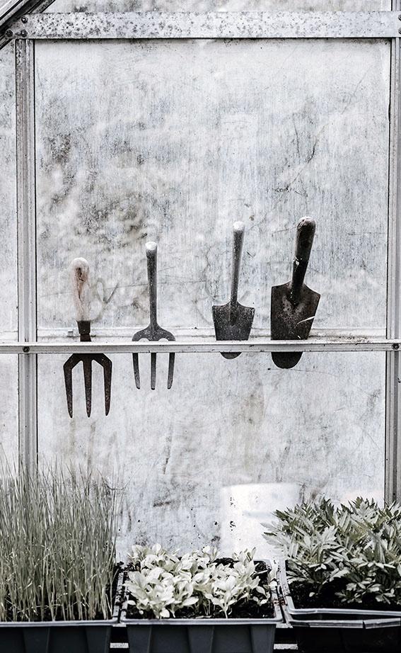 12 Gartenarbeiten im Frühling, die du tun oder lassen solltest