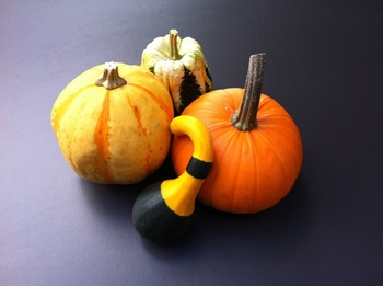 Kürbis - Sorten, Anbau, Zubereitung