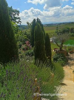 Ein Gartenparadies am Hang