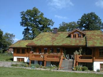 Steil Dachbegrünung