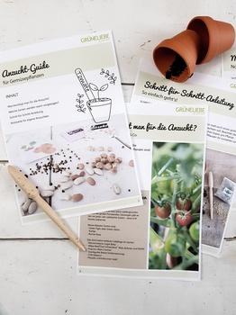 Anzucht-Guide für Gemüsepflanzen