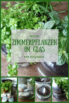 Grünzeug im Glas