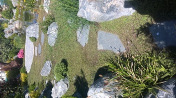 natürliche Teichanlage