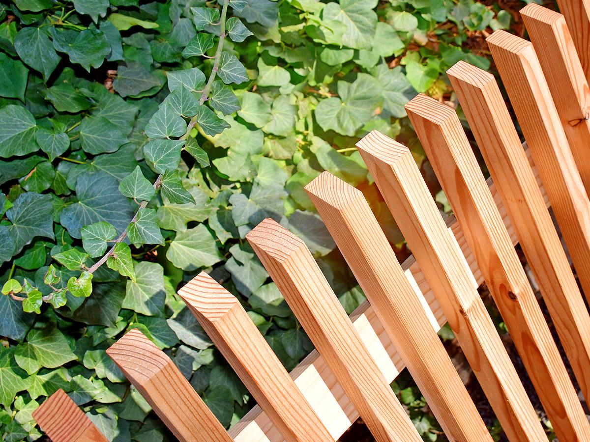 Profilzaun aus Lärchenholz