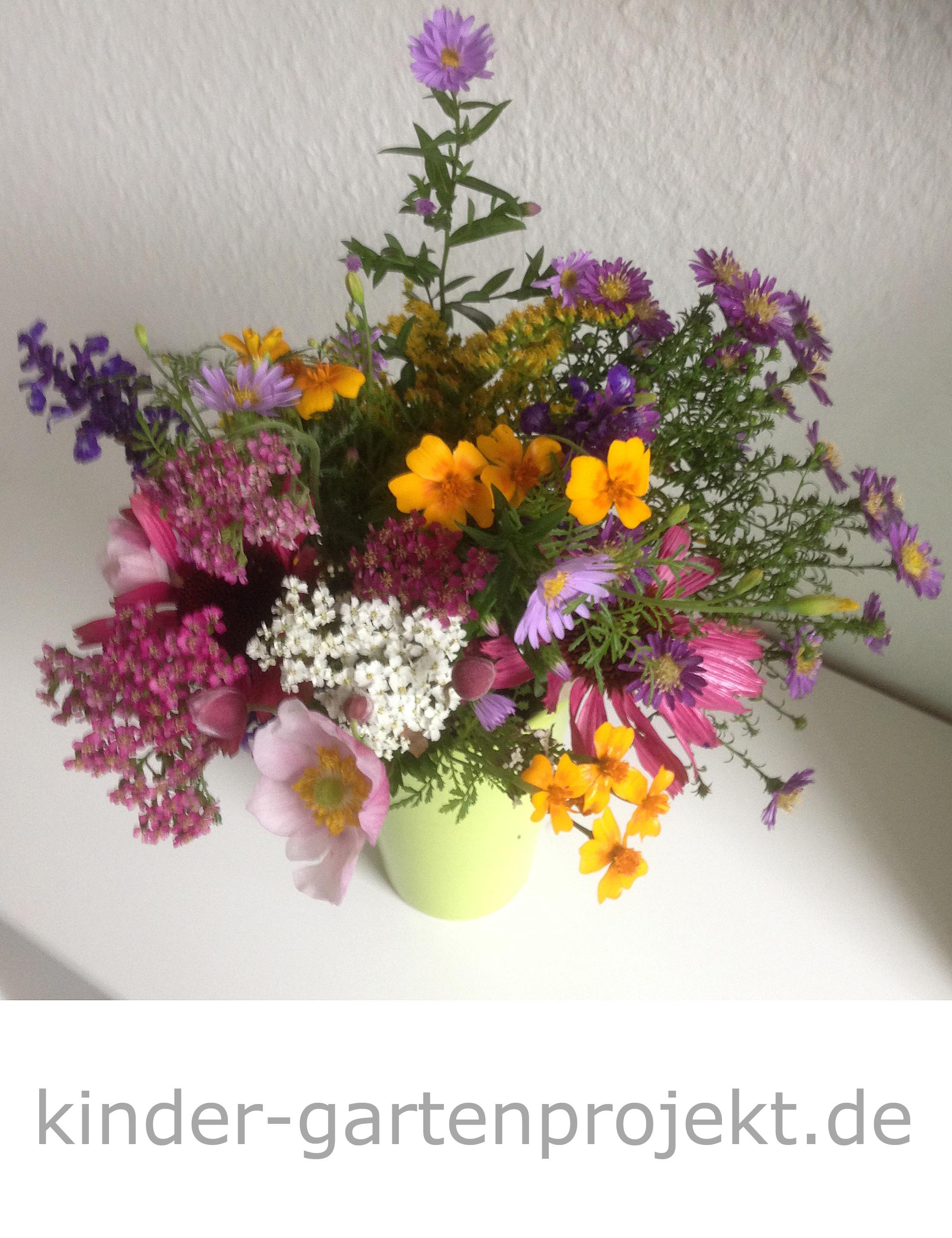 Blütenfeuerwerk vor dem Saisonende