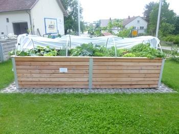 Gartenidee Hochbeet: Warum Hochbeete ideal sind, um  Gemüse zu pflanzen