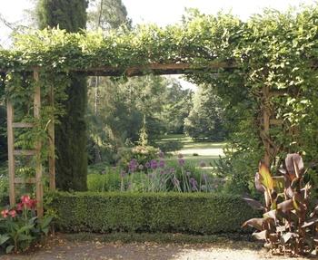 Den Garten selbst planen - darauf solltest Du achten