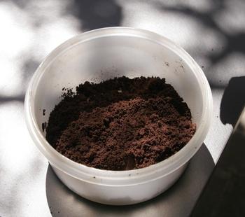 Kaffeesatz als Dünger