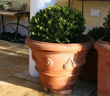 Terracotta-Töpfe reinigen