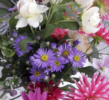 Wann du am besten Blumen aus dem Garten für die Vase schneidest