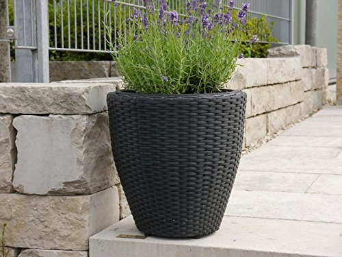 Freudengarten - Pflanzkübel für den Garten