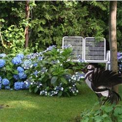Kleiner Garten – großes Paradies gestalten