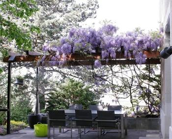 Eine Pergola als Gartenzimmer