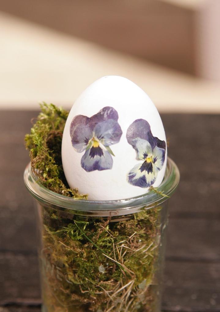 DIY: Ostereier mit Hornveilchen dekorieren