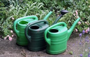 Urlaubsvorbereitung für den Garten