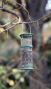 Vögel füttern – im Vogelhaus oder mit einer Futtersäule?
