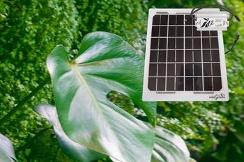 Vertikaler Garten - Selber bauen mit Vivit Komponenten