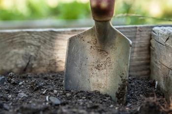 5 hilfreiche Gartentipps für den Februar