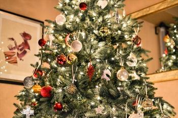 Weihnachtsstern Pflege: 3 wichtige Tipps