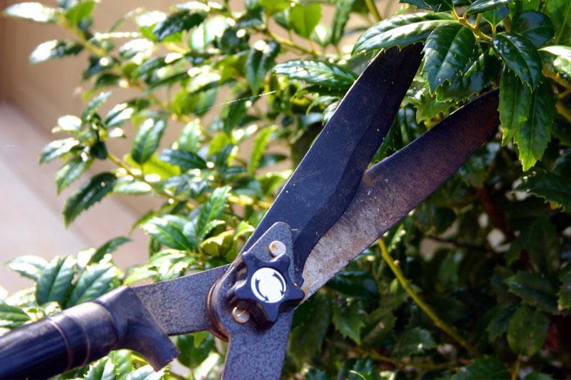 Nutzen Sie jetzt die Zeit, um Ihre Gartengeräte zu pflegen