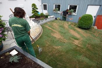 Pflegetipps für Ihren Rasen