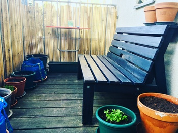 Gemüse am Balkon