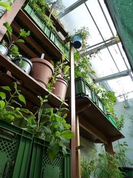 Gestaltungstipps für den Balkon