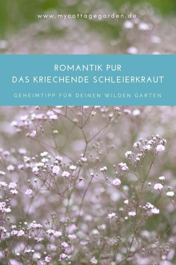 ROMANTIK PUR FÜR DEN GARTEN: Das kriechende Schleierkraut