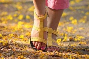 Kräuter für schöne Füße