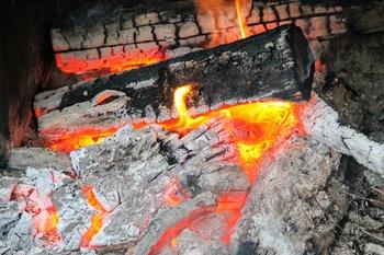 Holzasche - Ein natürlicher Gartendünger?