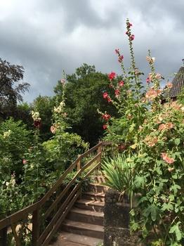 Kleiner, aber feiner Schlossgarten in Hochkönigsburg