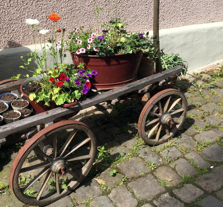 Mobiler Garten in Nürtingen