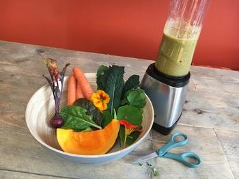 Grüne Smoothies:  Gesundes aus deinem Genialen Gemüsegarten!