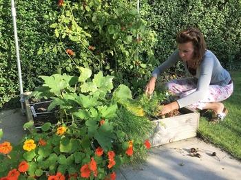 Oktober: Monat der Herbsternte!