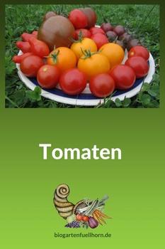Kleiner Tomatenteller aus dem Biogarten Füllhorn