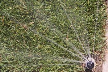 Bewässerungsanlage aktivieren