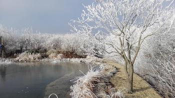 Winter – Machen Sie Ihren Teich winterfit