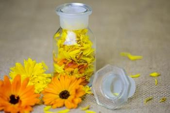 Schnelle Rezepte für die Hausapotheke mit Ringelblumenblüten