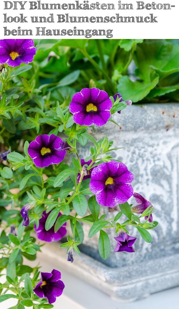 DIY Blumenkästen im Betonlook und Blumenschmuck beim Hauseingang